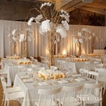 gold and white wedding room look with gorgeous braches with cascading orchids