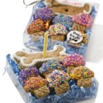Dog Birthday Cookie Treat Box-too cute!