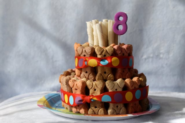 Dog Biscuit Cake For Their Birthday