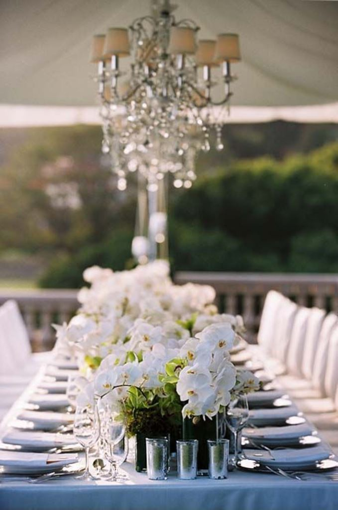 Gorgeous white orchid tablescape