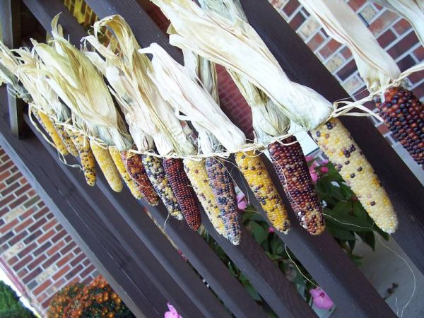 Decorative Corn Garland