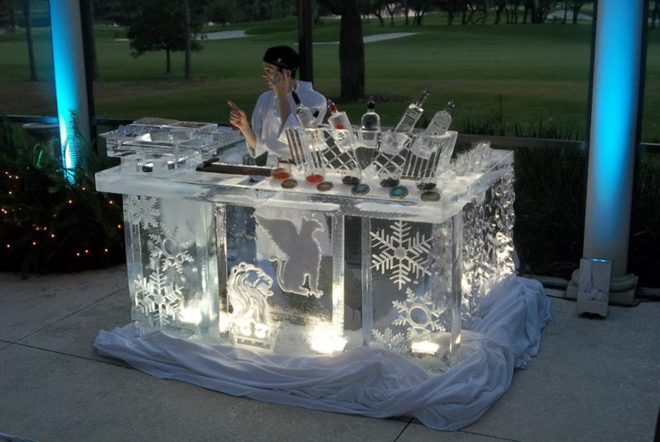 Cool ice sculpture bar!