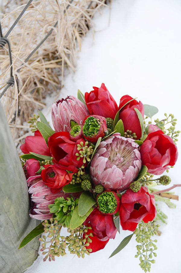 Gorgeous Winter Red bouquet With  Protea- B