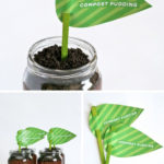 Earth Day food ideas-compost pudding