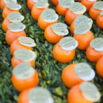 Love these Orange escort Cards