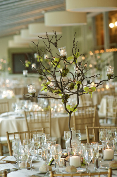 In Love With This Tree And Candle Centerpiece