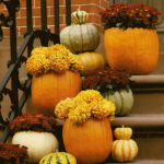 Love these Pumpkins And Mums!