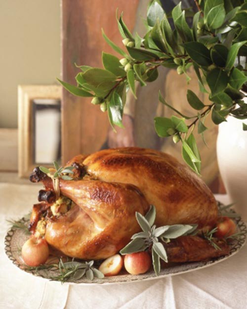 Beautful Thanksgiving Turkey Presentation