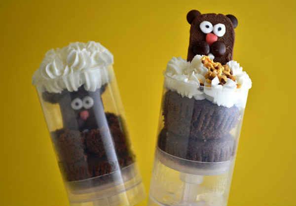 Adorable Groundhog day pop up treats!