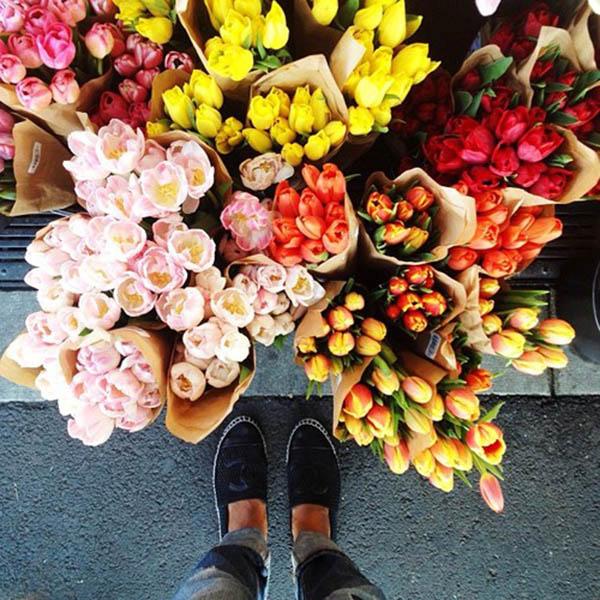 Wonderful Reasons to Send Flowers