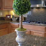 Boxwood Topiary Centerpiece DIY idea!