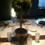 Gorgeous Moss Topiary Centerpiece