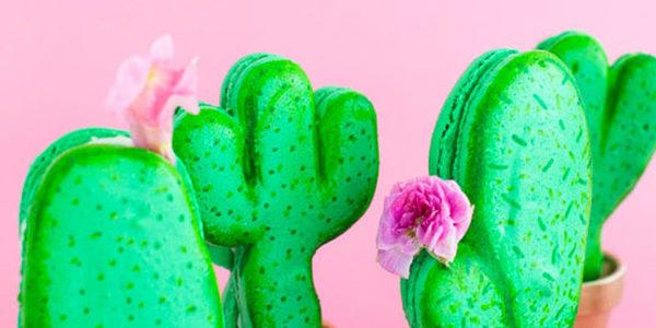 Trend Alert- Cactus Parties!