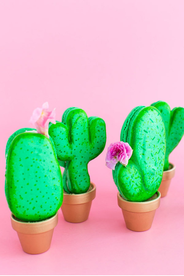 Adorable little catus macaroons!