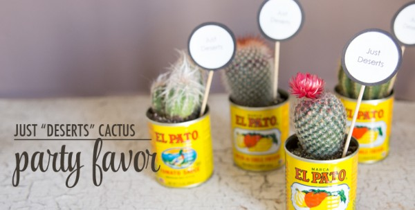 Cactus Party favors!