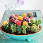 Fun cactus decorations!