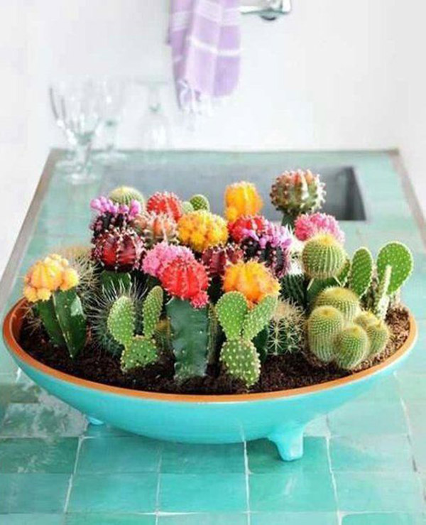 Fun cactus decorations!