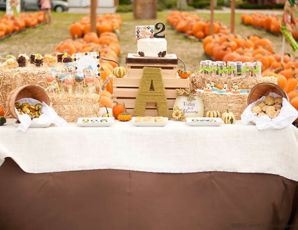 Amazingly Cute Pumpkin Party!