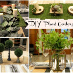 DIY Plant Centerpieces That Are Perfect For All Occasions! -Learn How To Make Them on B. Lovely Events