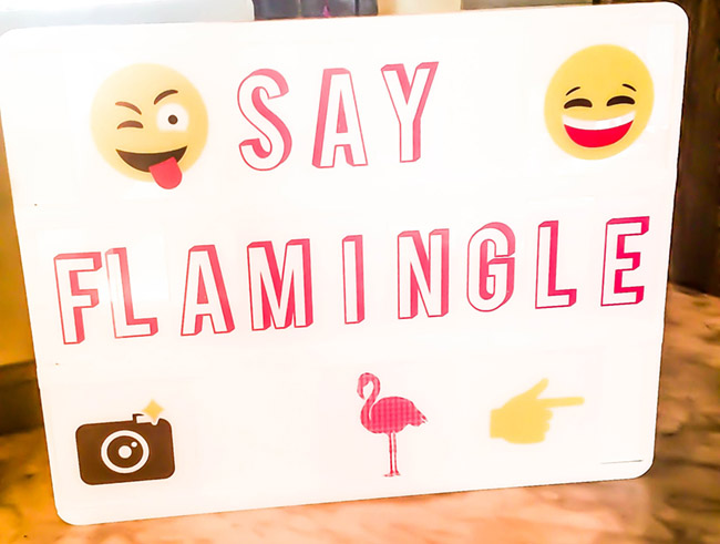 say-flamingle-sign-for-flamingo-party
