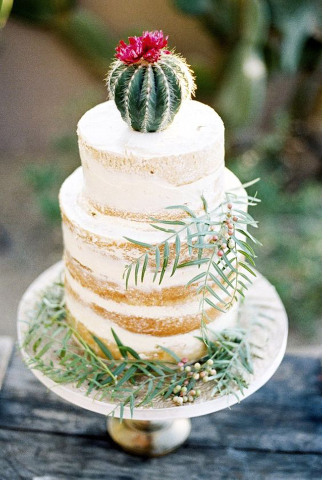 Natural Cake Cactus Ideas - See Lovely & Fun Cactus Ideas on B. Lovely Events