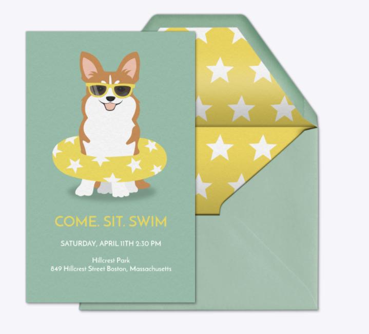 Pool Party Invitation- Evite