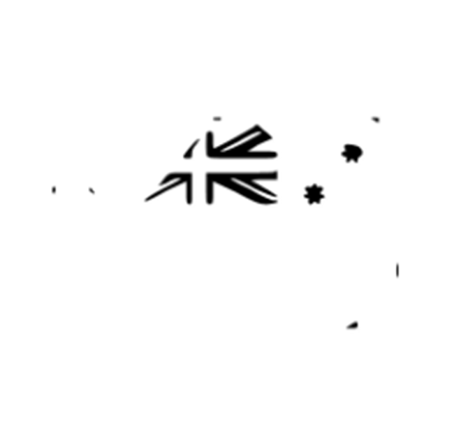 Kangaroo Australian Flag